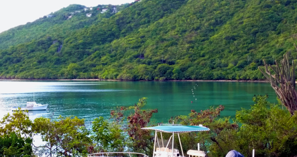 Brewer's Bay, St. Thomas, Virgin Islands